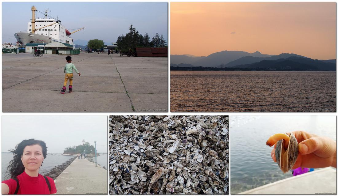Северная Корея, побережье Японского моря. Ищем колючую проволоку.