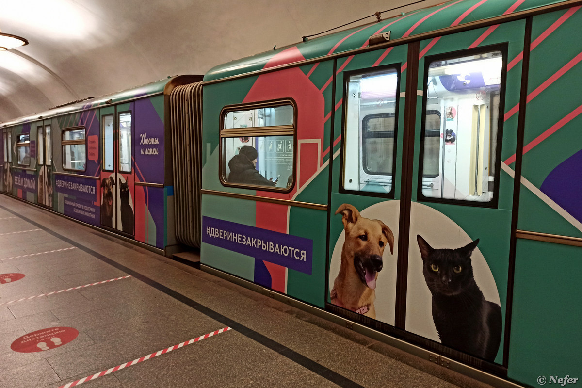 """Поезд называется """"Хвосты и лапки"""" метро,redminote8pro"""