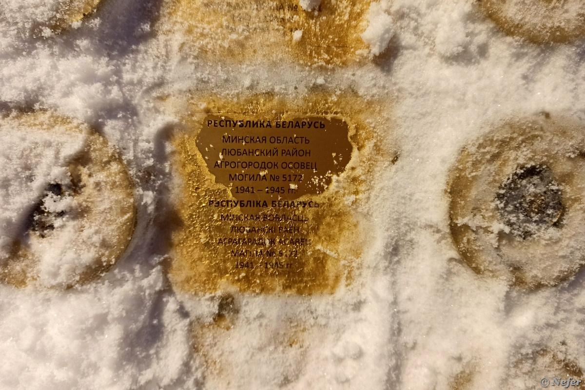 Наконец побывала в парке Патриот, сейчас там зимний фестиваль